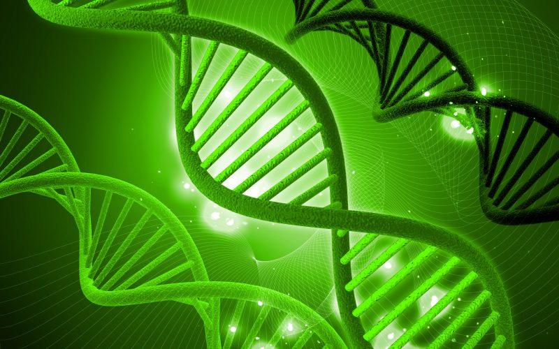 recherches scientifiques cancer poumon