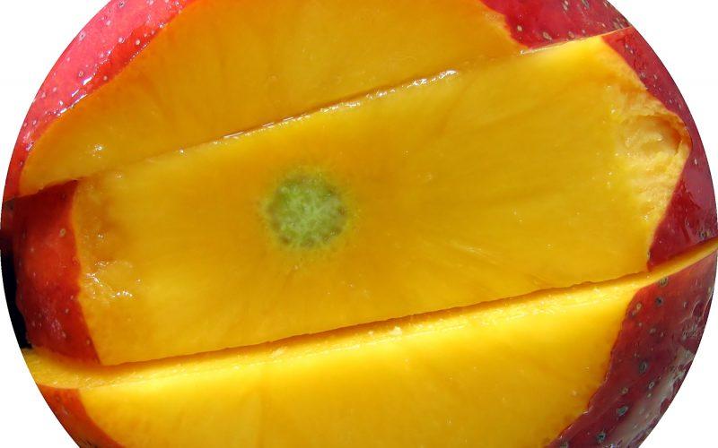 mangue baisse taux de sucre dans sang